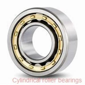 American Roller CD 142 Cylindrical Roller Bearings