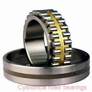American Roller D 1320 Cylindrical Roller Bearings