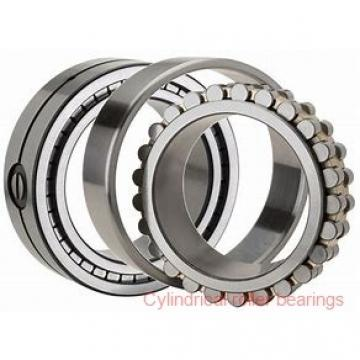 American Roller D 1318 Cylindrical Roller Bearings