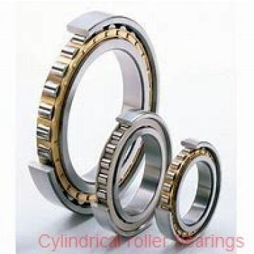 American Roller D 1317 Cylindrical Roller Bearings