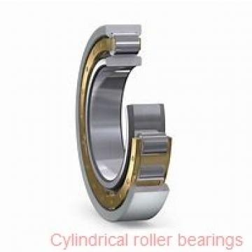American Roller CZ 317 Cylindrical Roller Bearings