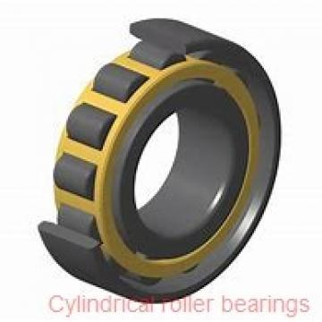 American Roller CD 130 Cylindrical Roller Bearings