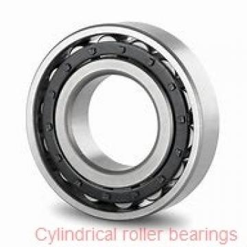 American Roller CD 330 Cylindrical Roller Bearings
