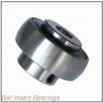 Hub City B250TWX1-1/8            CLEAN-SS-CP Ball Insert Bearings